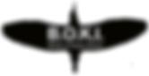 BOKI logo 4f509d_87a03798782f570f134a90e