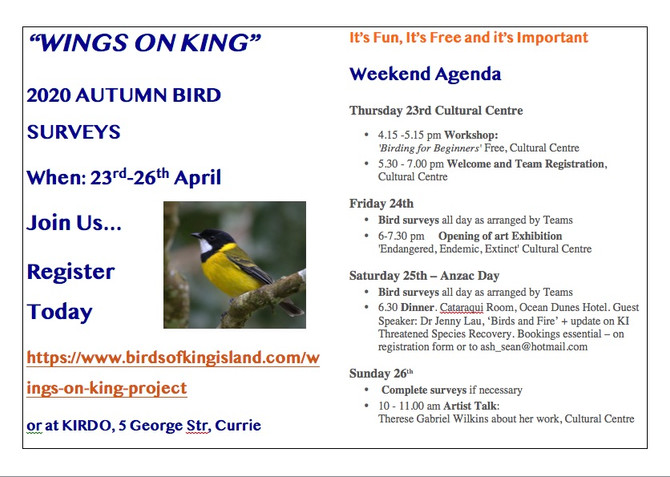 AUTUMN 2020 WINGS ON KING BIRD SURVEYS 23-26th April, 2020 COME ALONG: Its Fun, its Free and its Imp