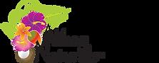 logo - Akilay.png