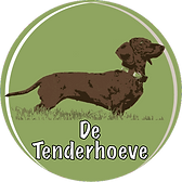 Logo Tenderhoeve_edited.png