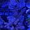 Thumbnail: Acro multi WYSIWYG