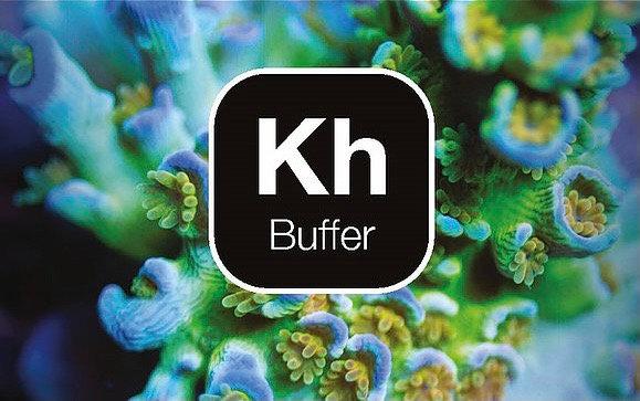 Reef Zlements KH buffer 250ml