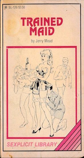 Sexplicit Library (6 vintage adult paperbacks)