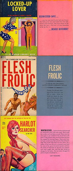 Late-Hour Library / Stardust Reader (3 vintage adult paperbacks)