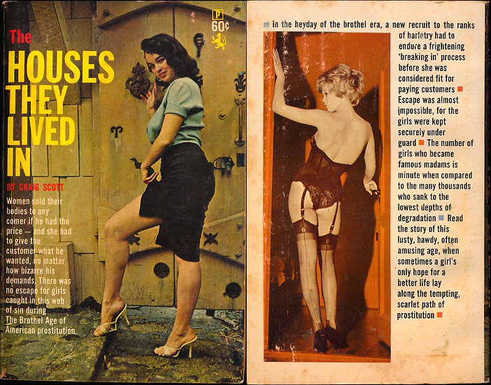 The Houses They Lived In (Vintage paperback, Bonnie Logan cover)