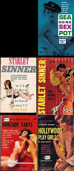 Pillow Books (5 vintage adult paperbacks)