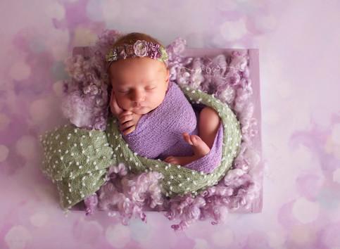 Mastering Studio Light - Newborn Photography Workshop with Leanne Curtis