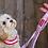 Thumbnail: DOGUE Floral Canvas Lead