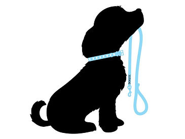 DOGUE Leads, collars & harnesses