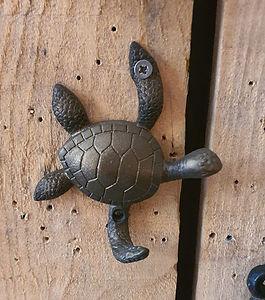 Patère tortue deco forcalquier alpes de haute provence 04