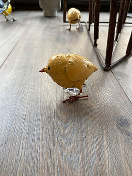 Poussin jaune Arrosoir&Persil
