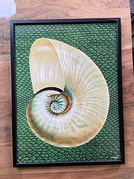 Poster vanilla fly deco meuble forcalquier alpes de haute provence 04