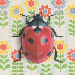 ladybug-colors-8x8-web