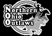 NOO Logo (Newest).png