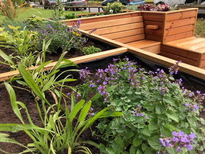 Planting in The Friendly BenchⓇ.
