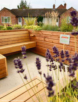 Lavender at The Friendly BenchⓇ