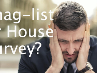 Do I need a house survey or a snag list?