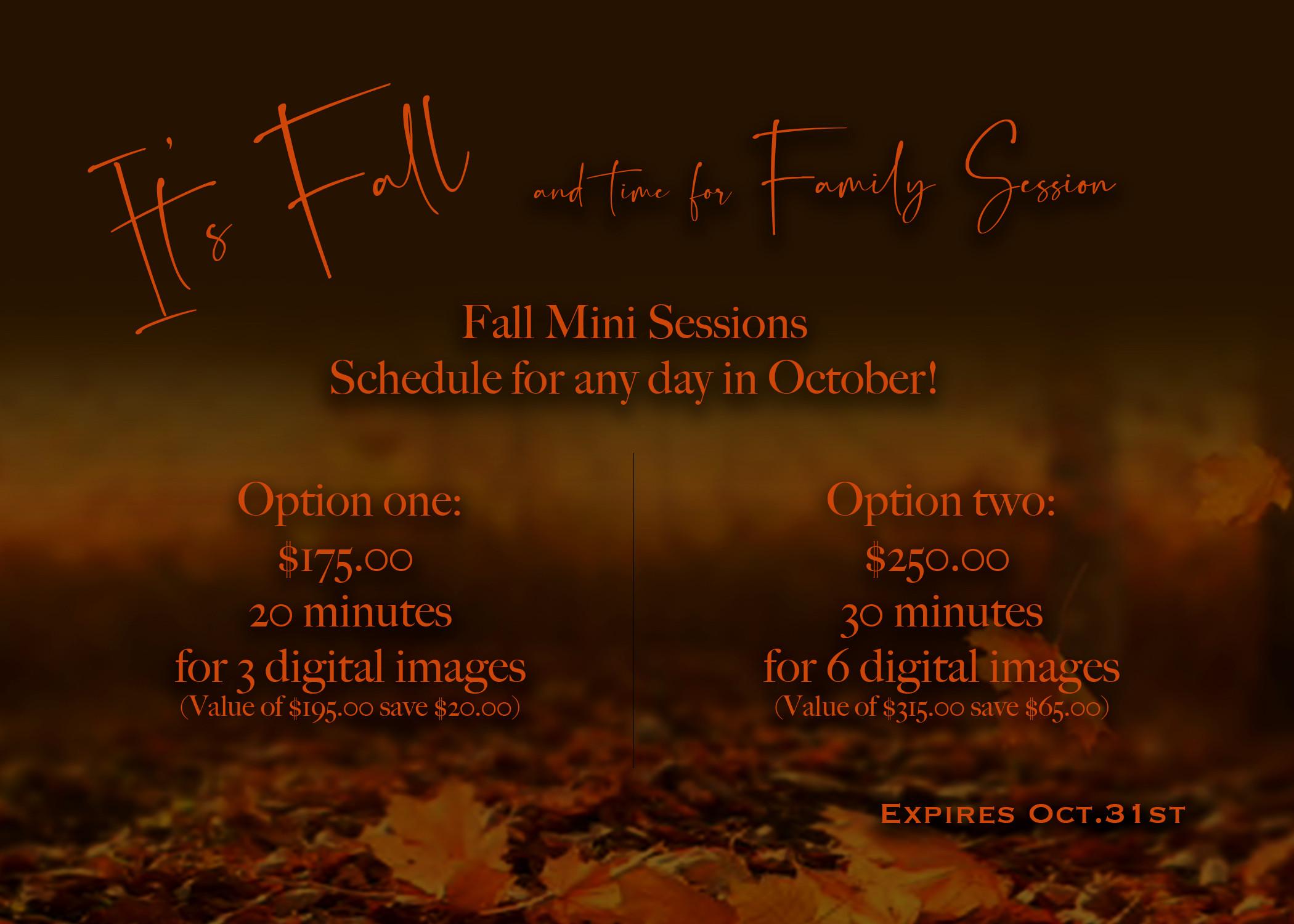Fall Mini Session - Option 1