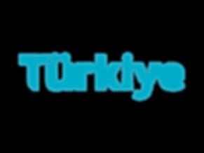 TIM_logo_T_rgb.png