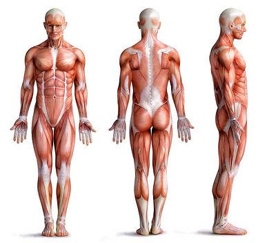 Body 09 Cancer.jpg