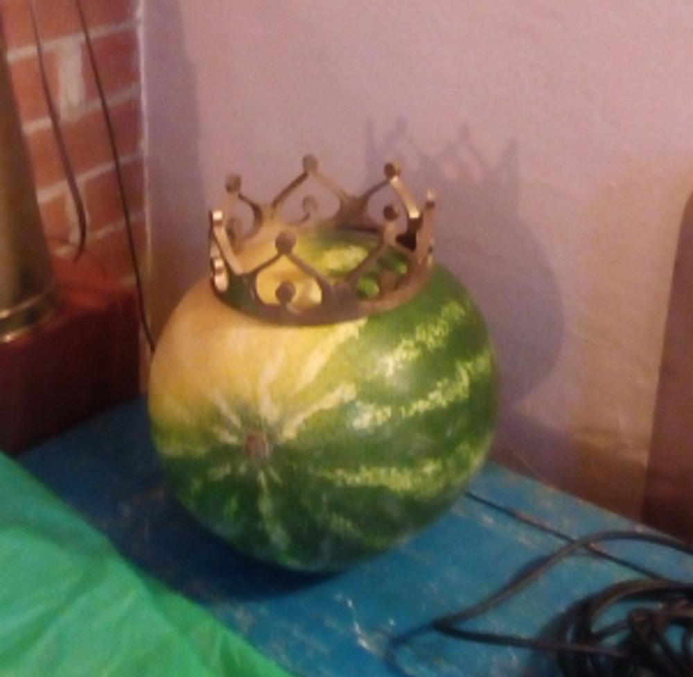 corona anguria