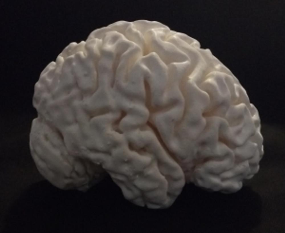 astrati cervello tac stampa3d conversione