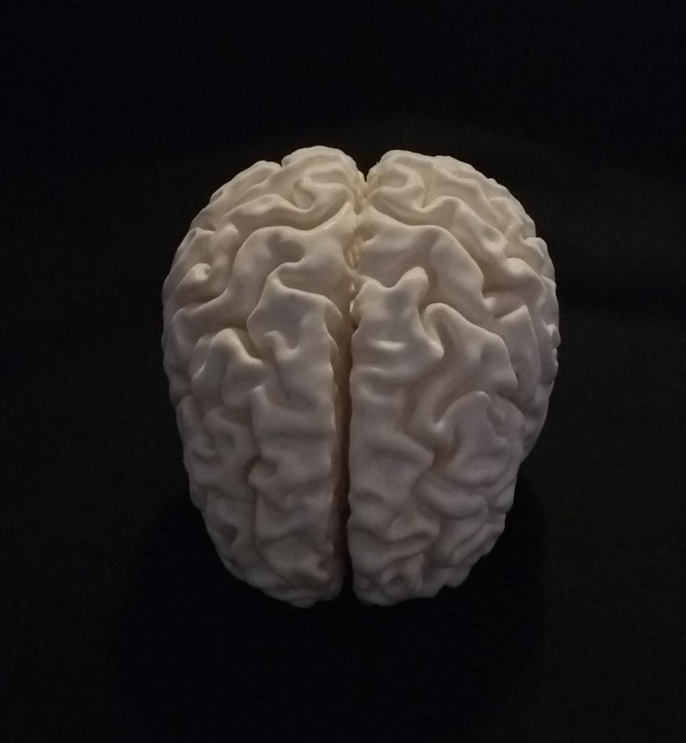 cervello1 astrati stampa3D