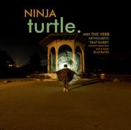 NINJA TURTLE (2019)
