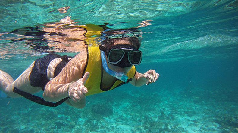 1/2 Day total snorkeling (reef, turtles, wreck, statues)