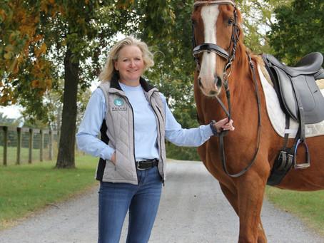 Heaven for Horses