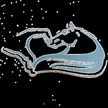 Antique Blue Heart Horse Sticker
