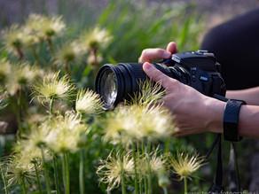Začetni tečaj fotografije 20.10.2021 ob 18h