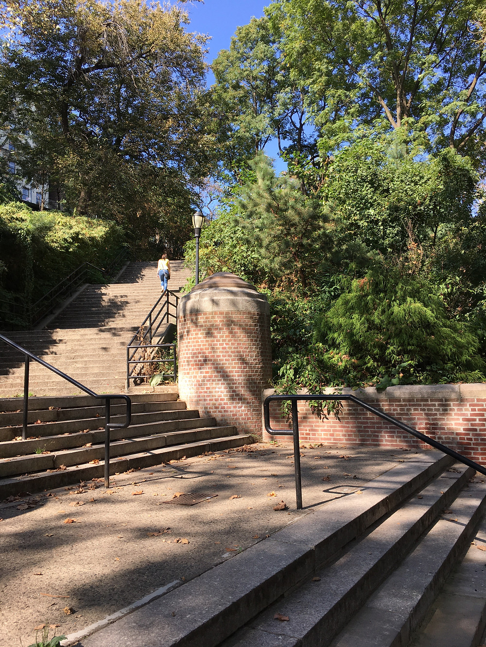This wide set of stairs in Jackie Robinson Park can be accessed at Bradhurst Avenue and 148th Street