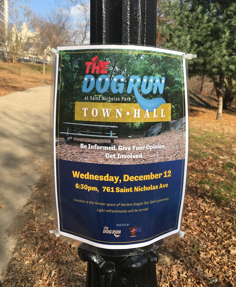 The flyer for The Dog Run at St. Nicholas Park town hall