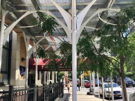 Urban Umbrella's high-design scaffolding comes to Harlem