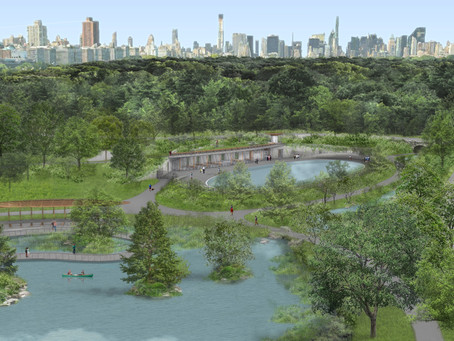 A totally reimagined new pool and rink are coming to the north end of Central Park