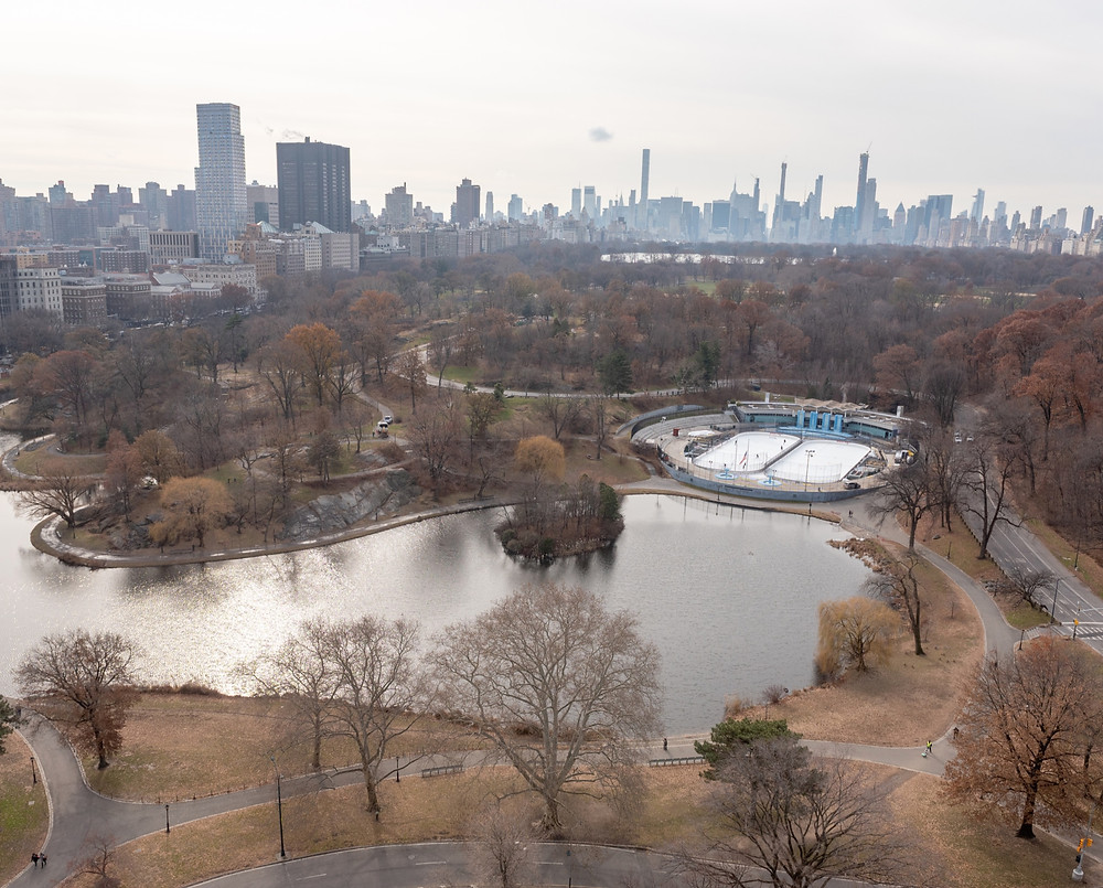 View of Lasker Rink and Pool, built in 1966. Image courtesy of the Central Park Conservancy.
