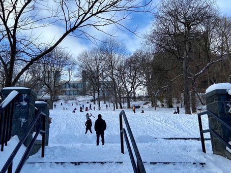 Uptown's top sledding spots
