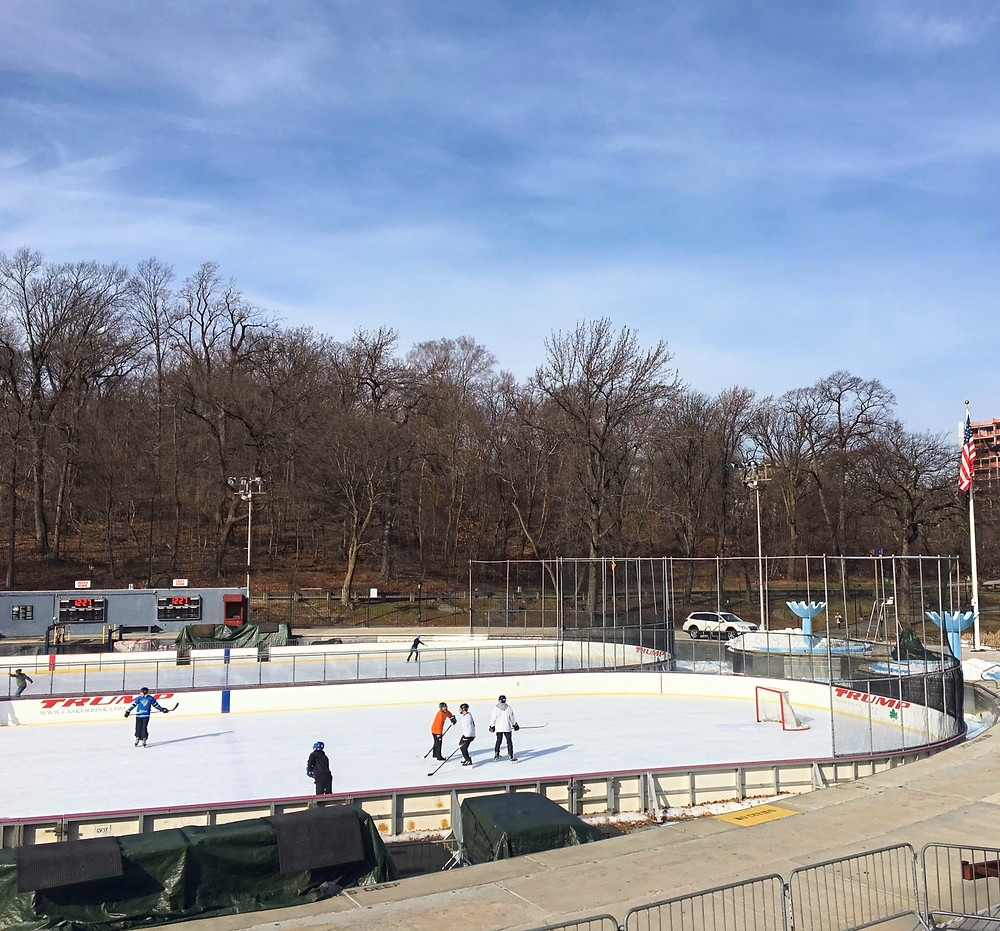 The Trump Organization has removed the Trump name from Lasker Rink in Central Park