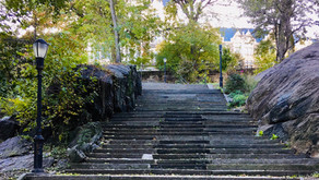 Exercise in the time of coronavirus: park stairs