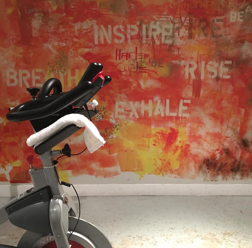 Harlem Cycle