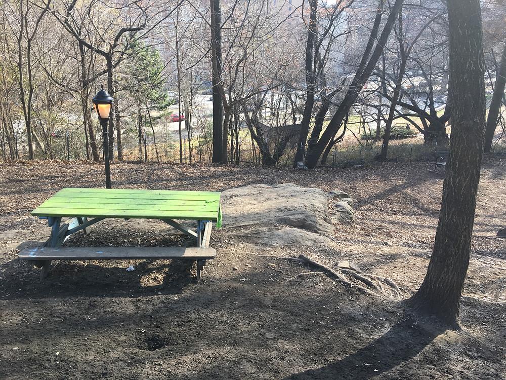 St. Nicholas Park Dog Run