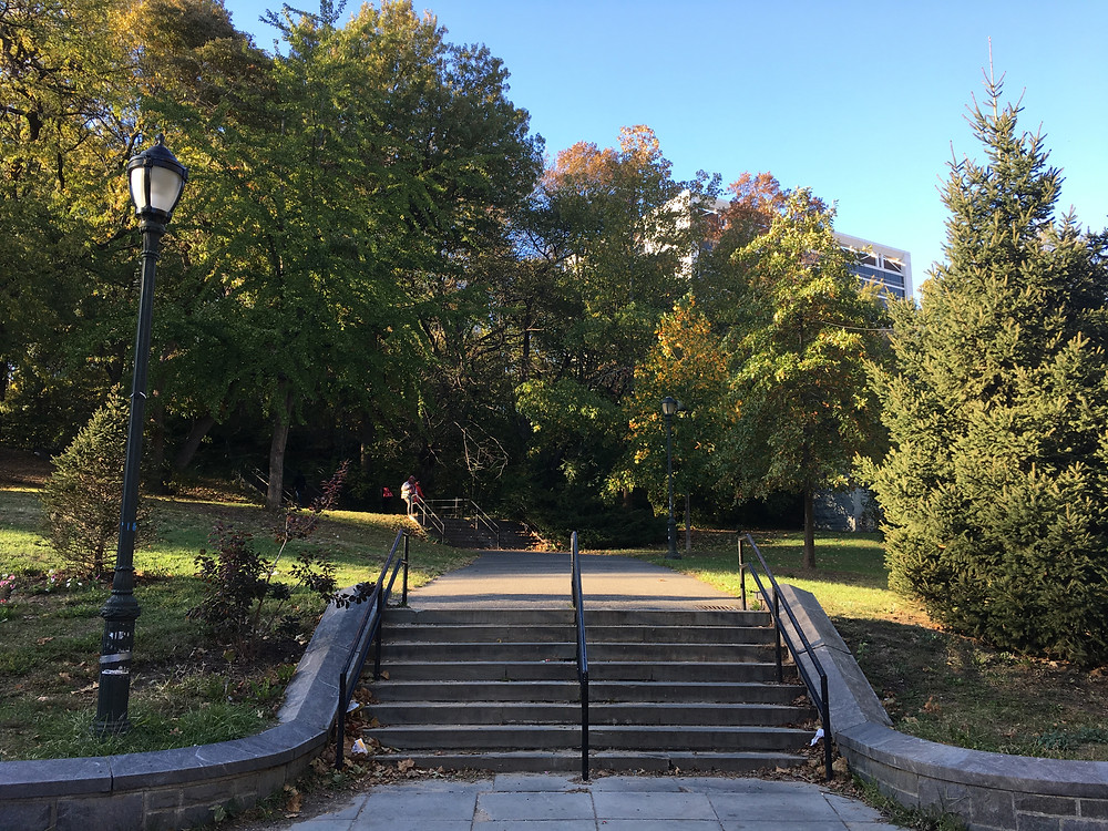 the stairs in St. Nicholas Park
