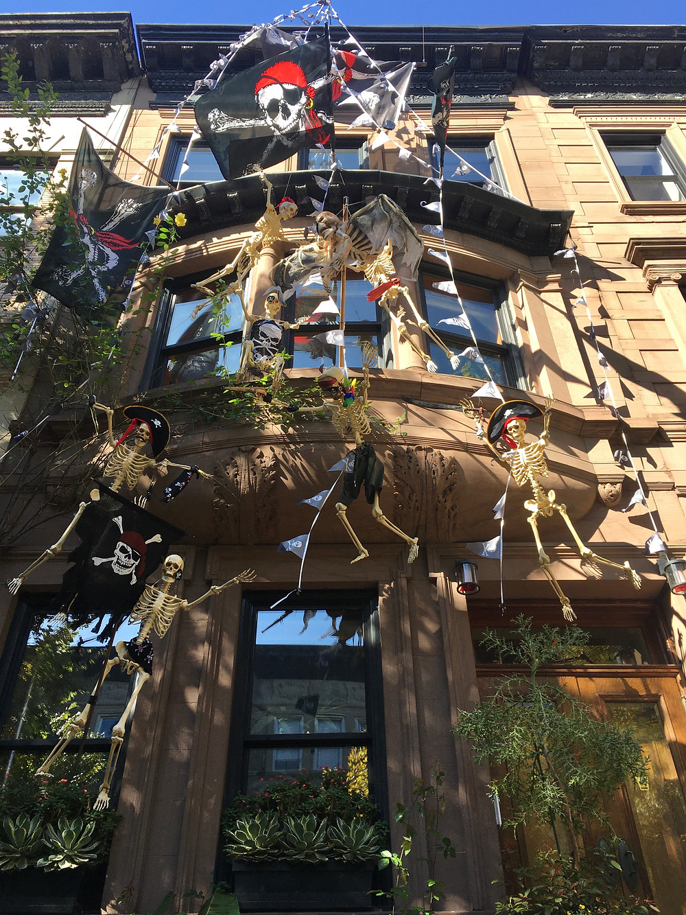 Skeleton pirates have taken over a Hamilton Terrace brownstone