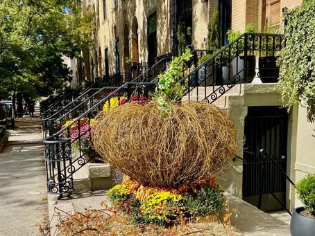 Head to These 3 Historic Harlem Neighborhoods for Major Halloween Spirit