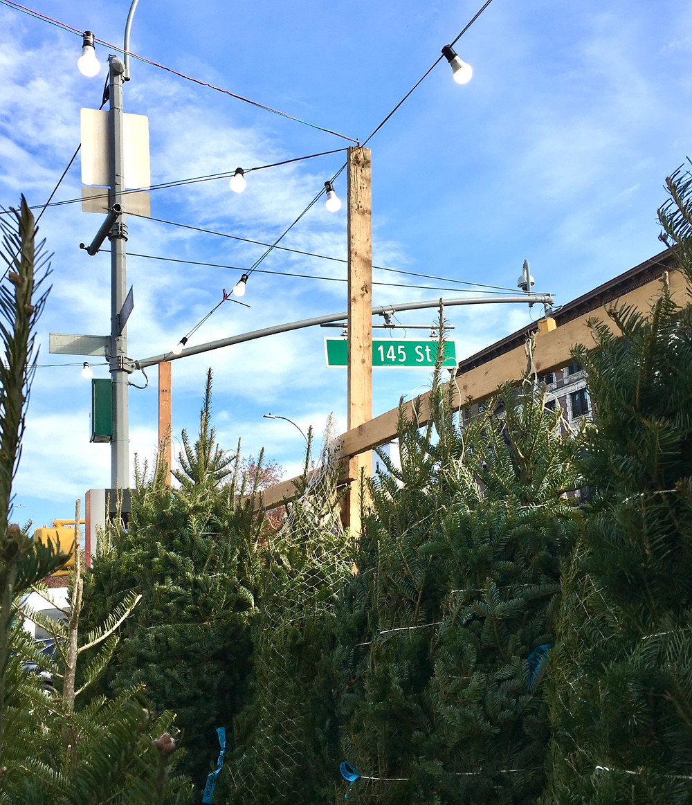 The Harlem Tree Corner is here and just got its Christmas trees