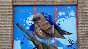 See the latest birds to join the Audubon Mural Project