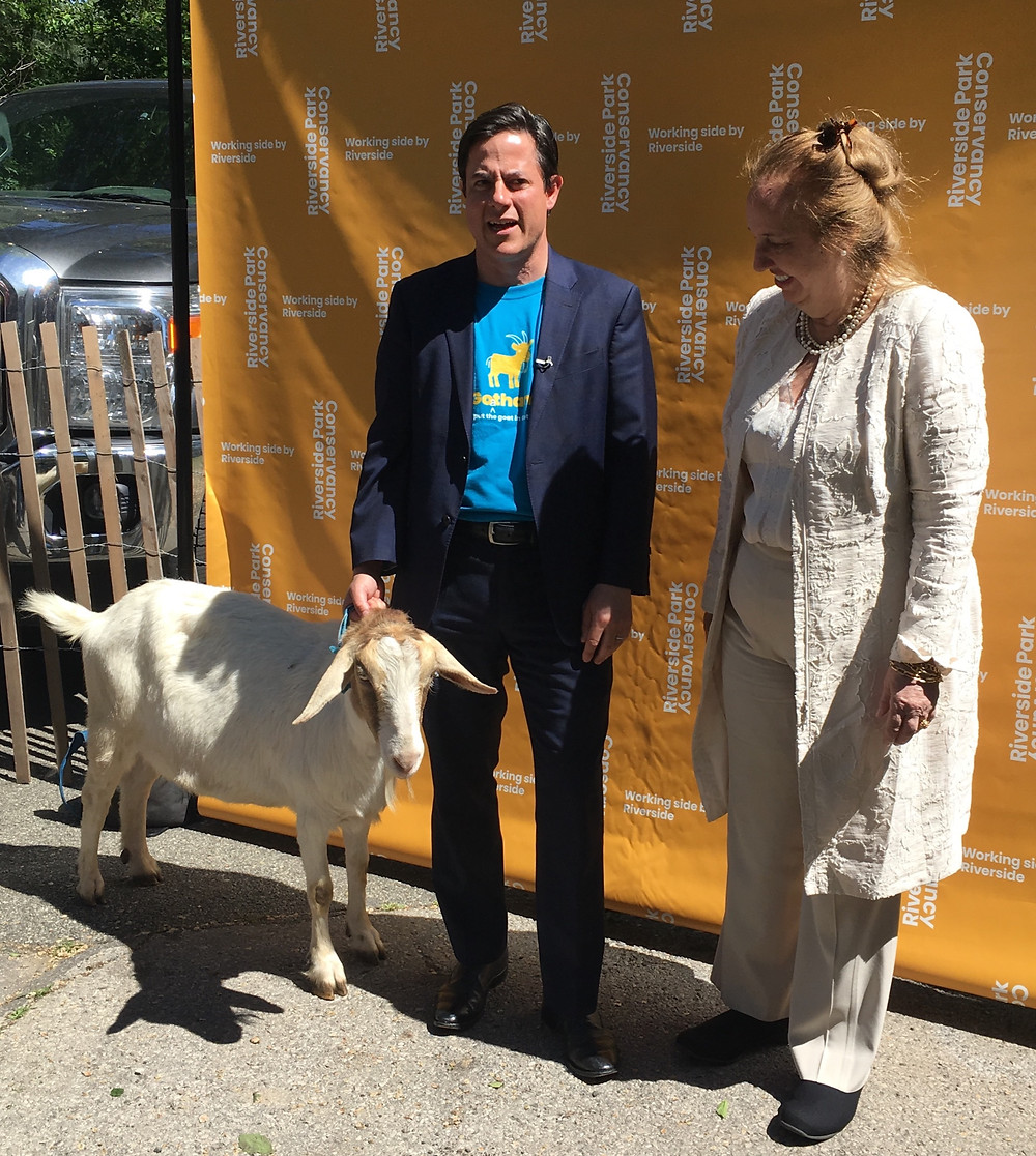 Dan Garodnick, President of the Riverside Park Conservancy, and Manhattan Borough President Gale Brewer, at the goat event in Riverside Park