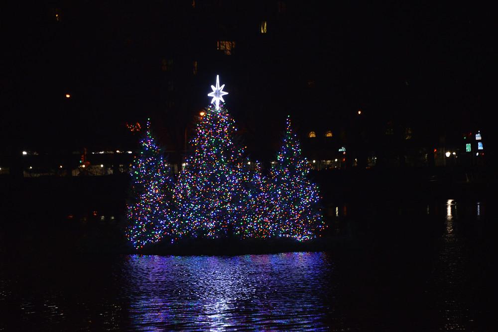 Photo via Central Park Conservancy