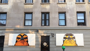 Celebrate spring with a tour of the Audubon Mural Project